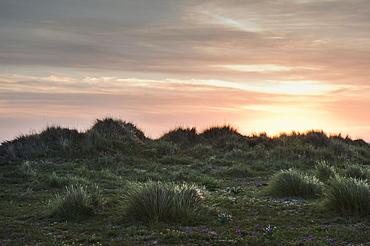 A Sunset At Los Lances Beach In Costa De La Luz, Tarifa, Cadiz, Andalusia, Spain