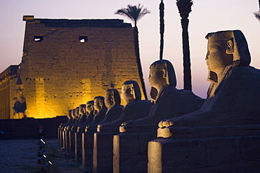 Stone Statues And The Luxor Temple On The East Bank Of Luxor Along The Nile River, Luxor, Egypt