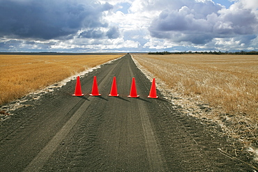 Safety cones lined up across a rural road, Saskatchewan canada