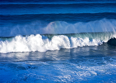 A Wave Breaks On The Central Oregon Coast, Florence, Oregon, United States Of America