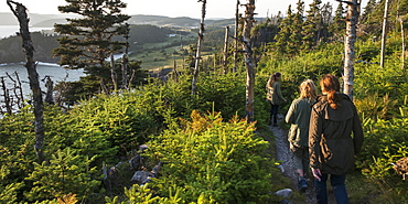 A Mother And Her Daughters Walk Down A Trail Along The Atlantic Coast, Newfoundland And Labrador, Canada