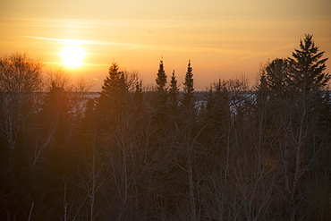 Sunset In A Golden Sky With Trees In The Foreground, Hecla-Grindstone Provincial Park, Riverton, Manitoba, Canada