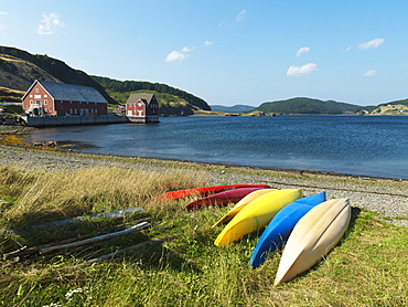 Colourful Canoes On The Grassy Shore At The Water's Edge, Trinity, Newfoundland And Labrador, Canada