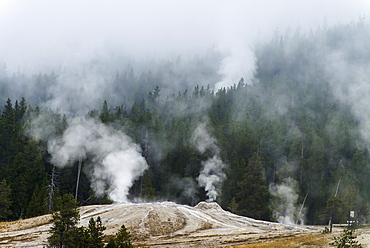 Upper Geyser Basin, Yellowstone National Park, Wyoming, United States Of America