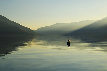 A Buoy Floats In Tranquil Lake Water With A Silhouette Of The Swiss Alps At Dawn, Ascona, Ticino, Switzerland