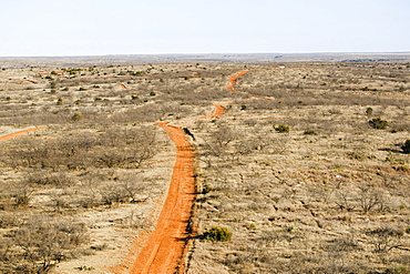 Agriculture - Aerial view of a dirt road passing through West Texas rangelands, sparse land used for cattle grazing / near Northfield, Texas, USA.