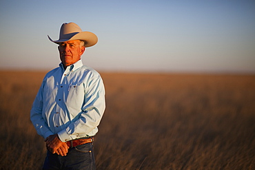 Agriculture - Cowboy standing in a conservation reserve program (CRP) field / Floydada, Texas, USA.
