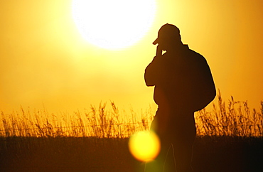 Agriculture - A farmer, silhouetted by the setting sun, talks on a cell phone in his field / Iowa, USA.