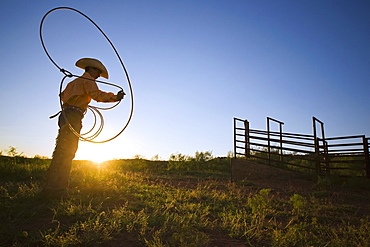 Agriculture - A young cowboy, silhouetted by the setting sun, spins his lariat (aka. lasso rope) / Childress, Texas, USA.