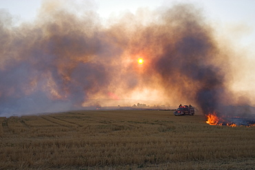 Agriculture - Field of wheat stubble being burned after the harvest to control diseases, reduce weed competition and to make the next planting easier. Volunteer fire fighters use the burning for training / near Williams, California, USA.