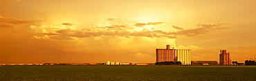 Agriculture - Grain elevators and an early growth corn field in late afternoon light / Johnson City, Kansas, USA.