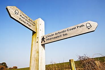 Coastal Path Signpost, Pembrokeshire Coast Path, Near Aber Mawr, Pembrokeshire, Wales