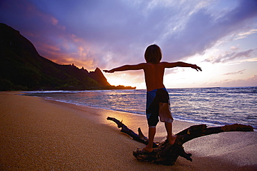 Playing On Driftwood On Tunnels Beach At Sunrise, Kauai, Hawaii, United States Of America
