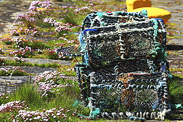 Knightstown Harbour With Lobsterpots, Knightstown, County Kerry, Ireland