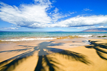 Hawaii, Maui, Wailea, Keawakapu Beach, Palm Tree Shadows On The Beach.