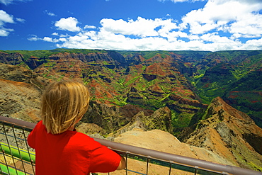 A Child Looks Over A Railing At Waimea Canyon, Kauai, Hawaii, United States Of America