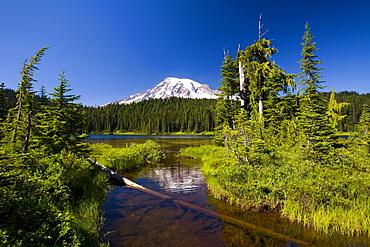 Mount Rainier, Mount Rainier National Park, Washington, United States Of America