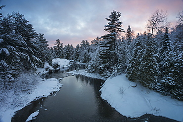 River With Snow Covered Evergreens At Sunset, Ontario, Canada