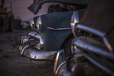 Rear End Of Vintage Cars, Manitoba, Canada