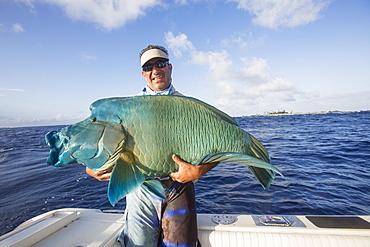Fisherman Holding A Fresh Caught Napoleon Wrasse (Cheilinus Undulatus), Tahiti