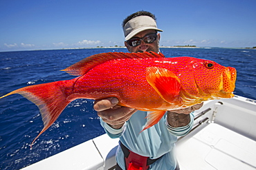 Fisherman Holding A Fresh Caught Red And Orange Fish, Tahiti