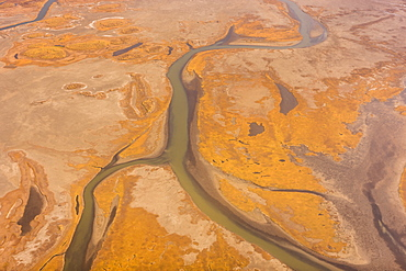 Aerial View Of A Branch Of The Noatak River, Lakes And Tundra, Noatak, Alaska, United States Of America