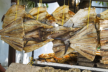 Dried Fish For Sale, Makassar (Ujung Pandang), South Sulawesi, Indonesia