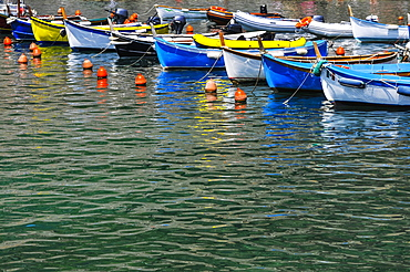 Boats Tied Up In The Harbour, Vernazza, Liguria, Italy