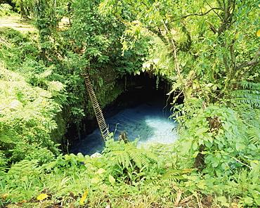 A Ladder To Sua Waterhole, Upolu Island, Samoa
