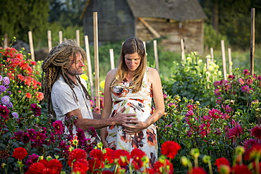 A Couple Touching The Woman's Pregnant Belly While Standing In A Flower Garden, Abbotsford, British Columbia, Canada
