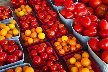 Tomatoes For Sale At A Roadside Stand, Dunham, Quebec, Canada