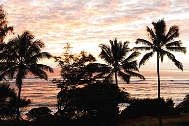 Morning Sunrise Through The Palm Trees Along Lydgate Beach, Lydgate, Kauai, Hawaii, United States Of America