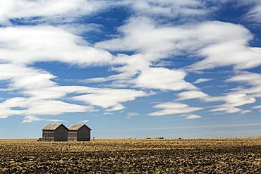Two Wooden Sheds In A Stubble Field With Dramatic Clouds And Blue Sky, Alberta, Canada
