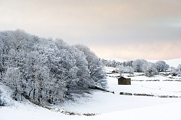 Wensleydale In The Aftermath Of A Very Heavy Snow Shower, Near Hawes, North Yorkshire, England