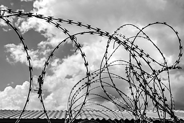 Detail Of Barbed Wire In Black And White, Soweto, Gautang, South Africa