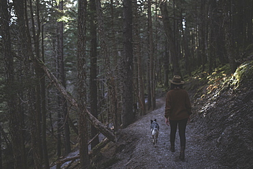 Woman Hiking With Her Dog On A Path In The Forest, Girdwood, Southcentral Alaska