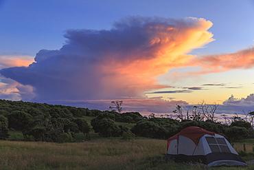 Camp Site At Keanakolu State Park With Cumulonimbus Sunrise Clouds, Island Of Hawaii, Hawaii, United States Of America