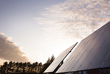 Solar Panels In Field, Bloomfield, Ontario, Canada