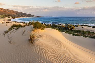 Punta Paloma Sand Dunes, Tarifa, Costa De La Luz, Cadiz, Andalusia, Spain
