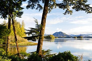 Tofino Chalet, Jensen's Bay, Tofino, British Columbia, Canada