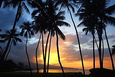 Sunset On The North Shore Of Maui, Spreckelsville, Maui, Hawaii, United States Of America