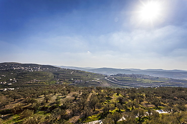 Looking South From The Hills Of Samaria In The Direction Of Jerusalem That Lies Just Over The Horizon, Sabasita, Samaria, Israel