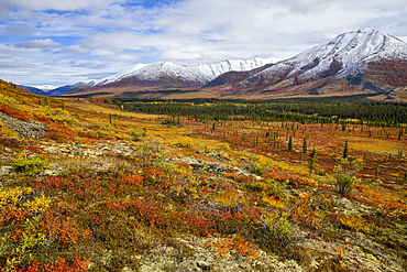 Ogilvie Mountains In Autumn Along The Dempster Highway, Yukon, Canada