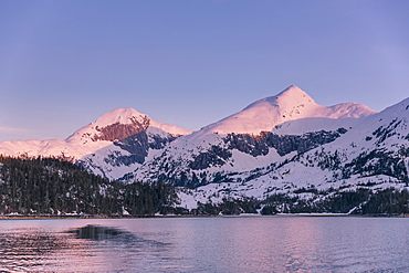 Golden Hour Light On Snow Covered Peaks In Kings Bay In Winter, Prince William Sound, Alaska, United States Of America