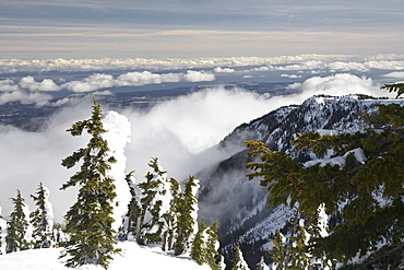 Mount Washington, Vancouver Island, British Columbia