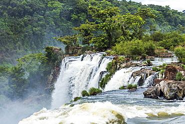 Trees And Rocks Next To Iguazu Falls, Parana, Brazil
