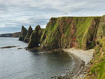 Sea Stacks And Cliffs Along Duncansby Head, John O'groats, Scotland