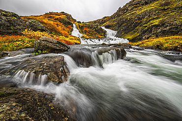 A Stream Flows Past On The West Fjords On Its Way To The Ocean, Iceland