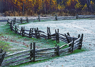Wooden Rail Fence In A Frost Covered Grass Field With Trees In Autumn Colours, Iron Hill, Quebec, Canada