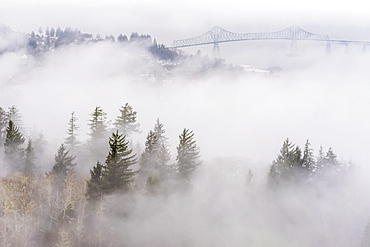 Fog Blankets The Hills Along The Columbia River, Astoria, Oregon, United States Of America